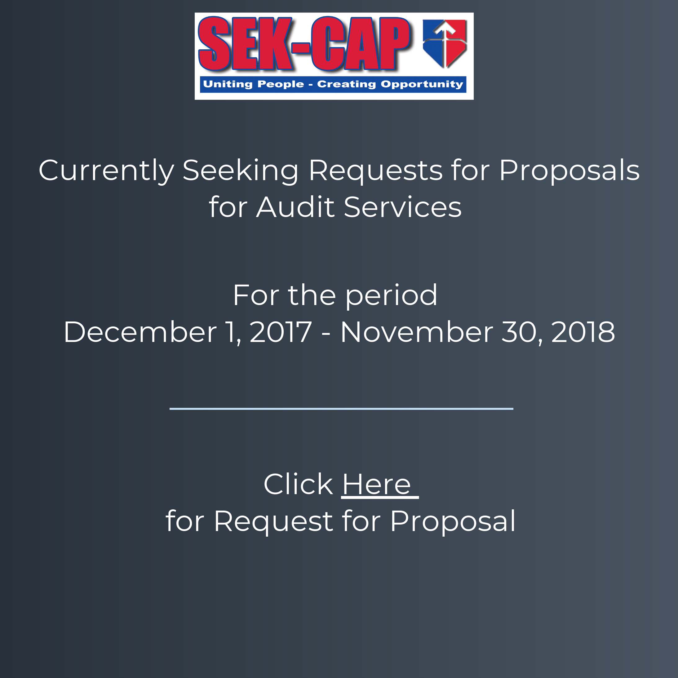 Audit Services RFP Website